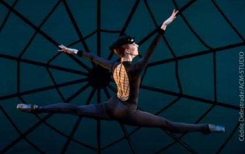Ballet du Nouvel An 2020 |